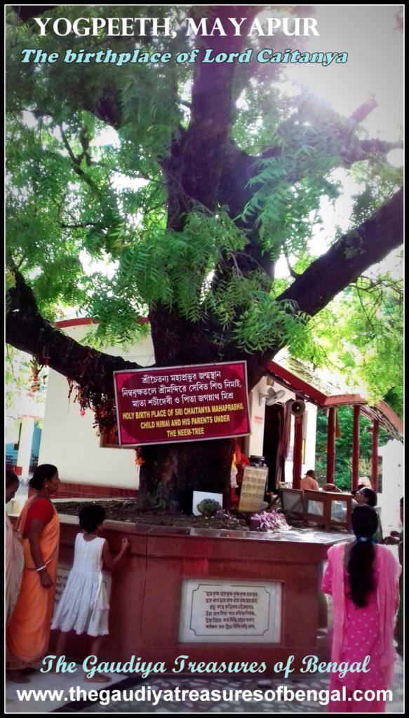 Yogpeeth Mayapur gtb