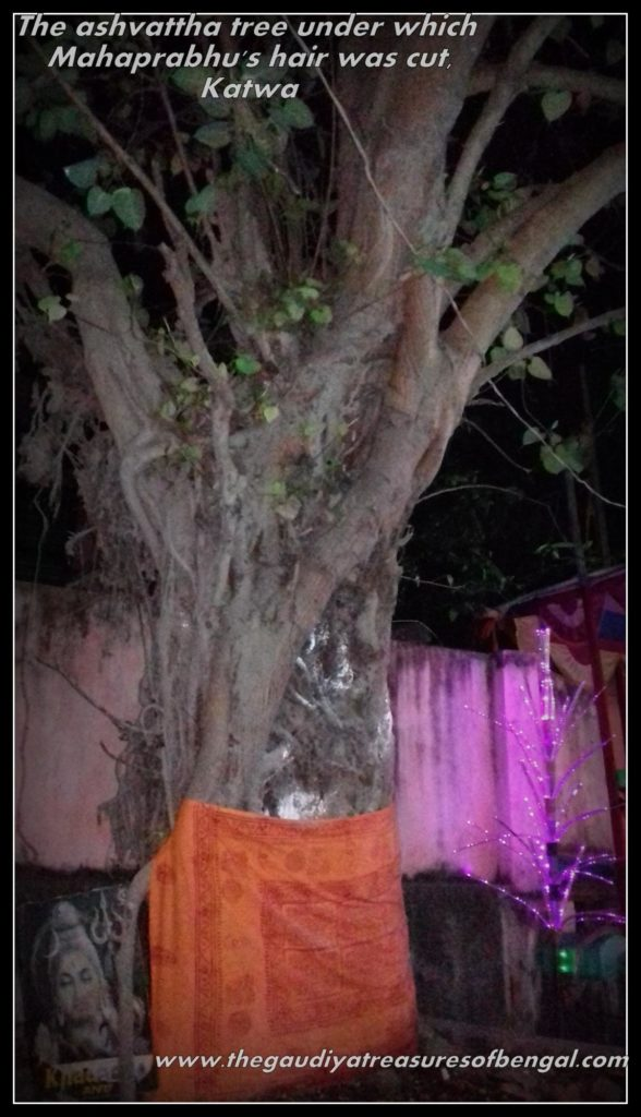 Mahaprabhu sannyasa katwa