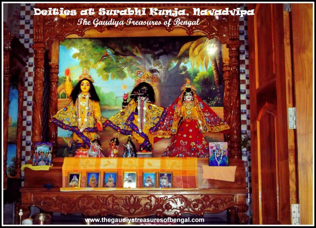 surabhi kunja bhaktivinoda thakur