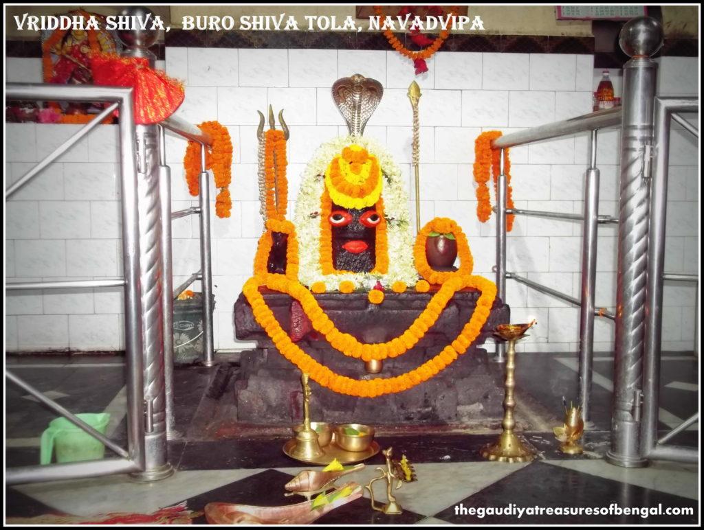vridha shiva Mayapur nabadwip